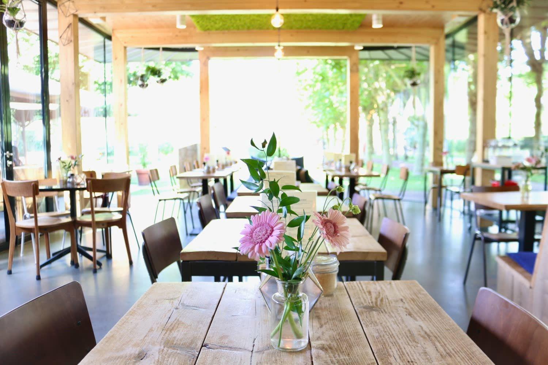 Beautiful Dignita restaurant has simple tables and natural lighting in Amsterdam