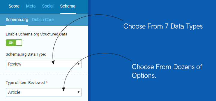 choose from various types of schema data types in seopressor extension