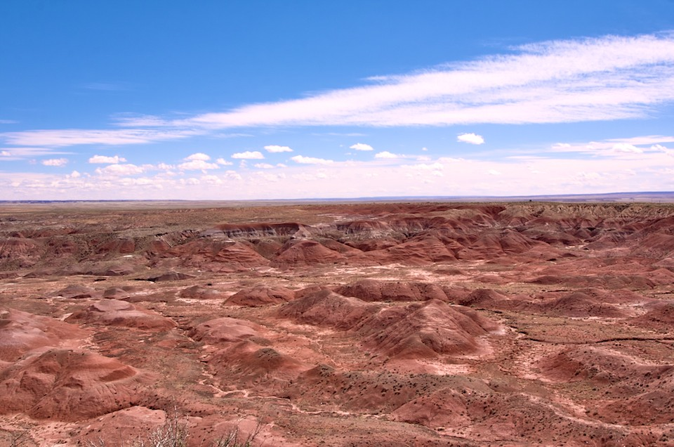 Painted Desert by Brandon Bohling