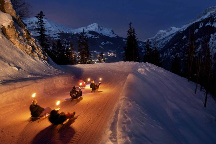 Night Sledding (Winter)