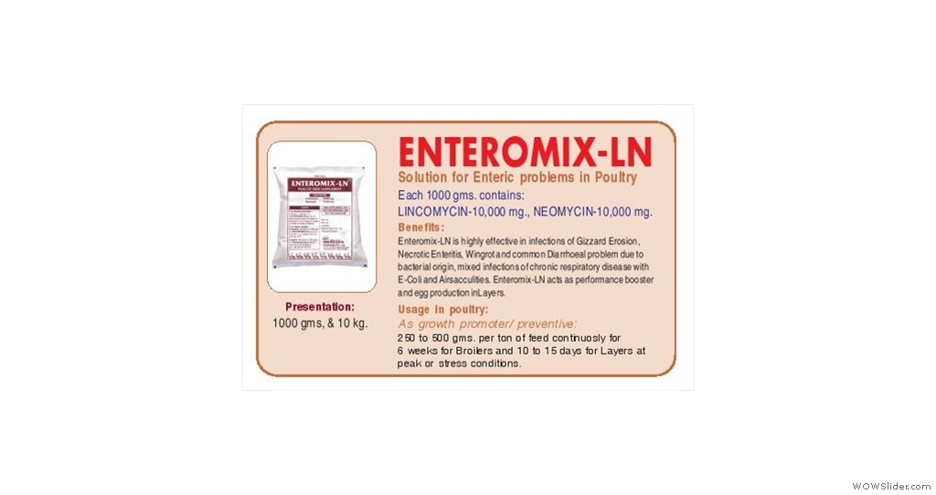 Solution For Enteric Problems