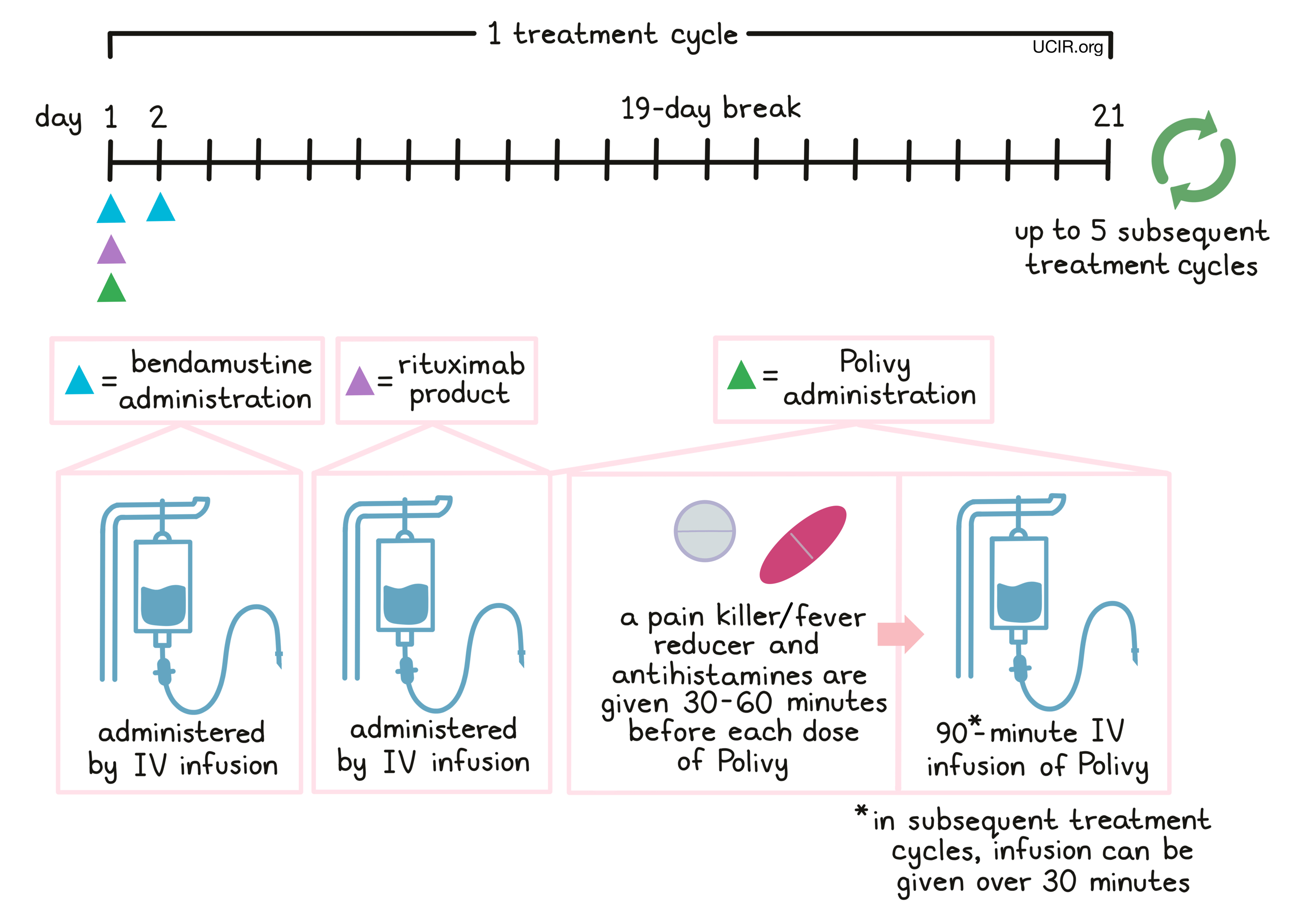 Illustration showing how Polivy is administered