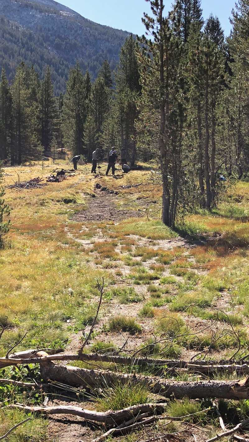 Crew moving trail in Lyell Canyon