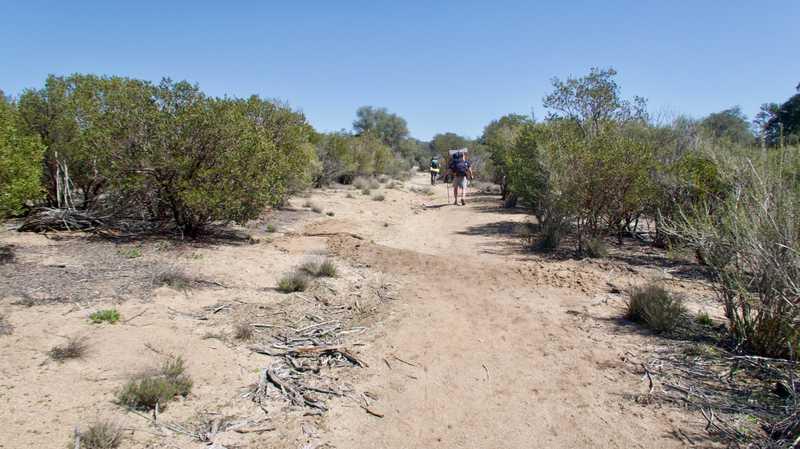 Wide desert trail