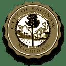 logo of City of Saginaw
