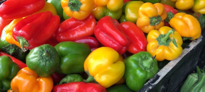 Farmers' Market peppers