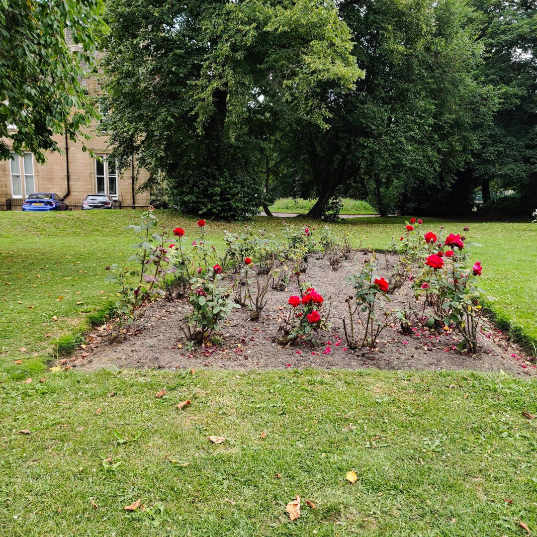 Westroyd Park flowers