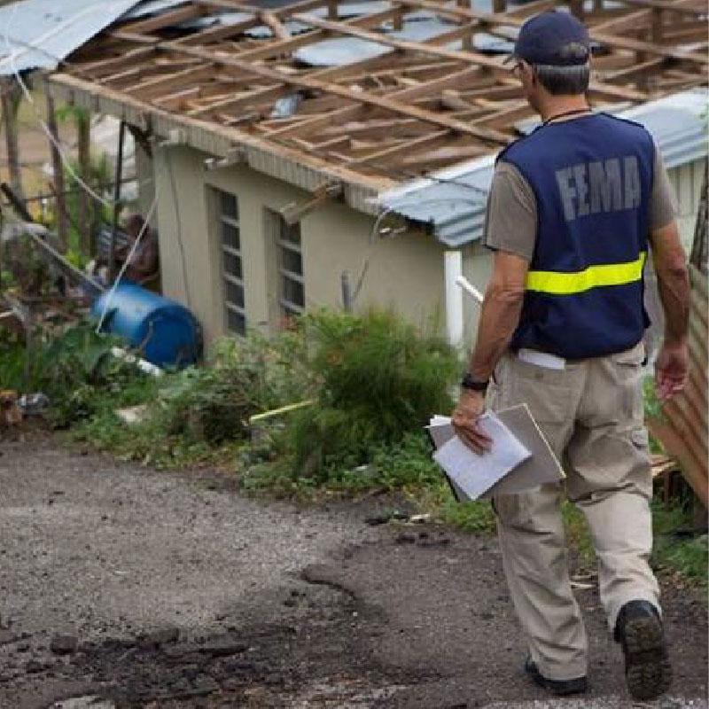 Facilitating Local Procurement Responses