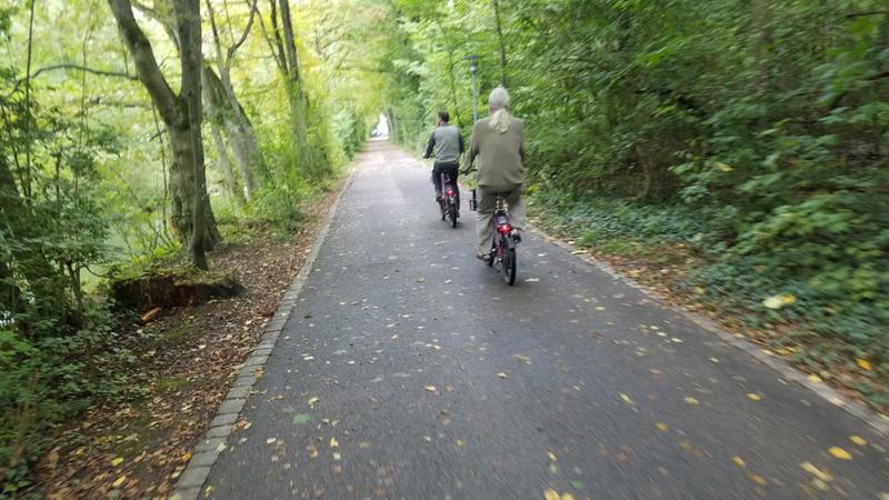 Biking through lush greenery