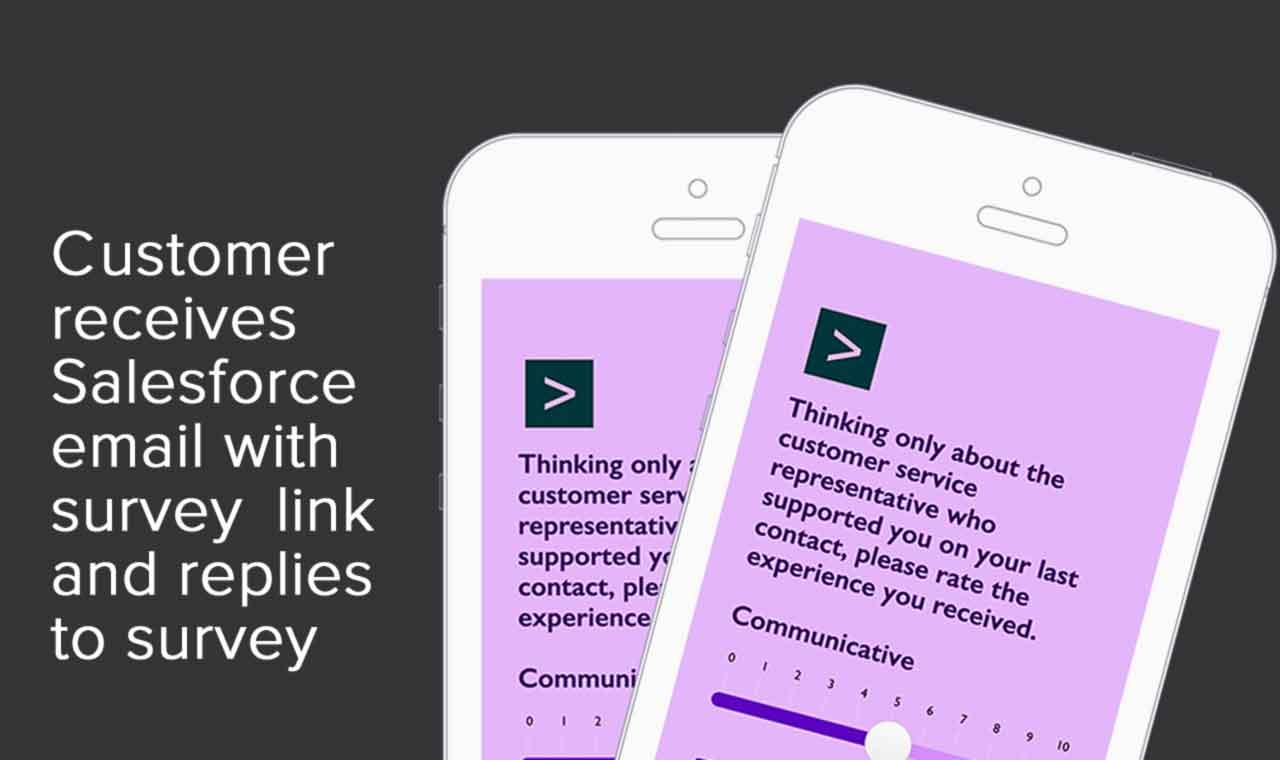 Salesforce feedback surveys