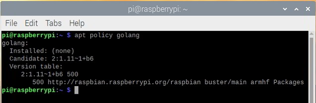 How to install Go on Raspberry Pi