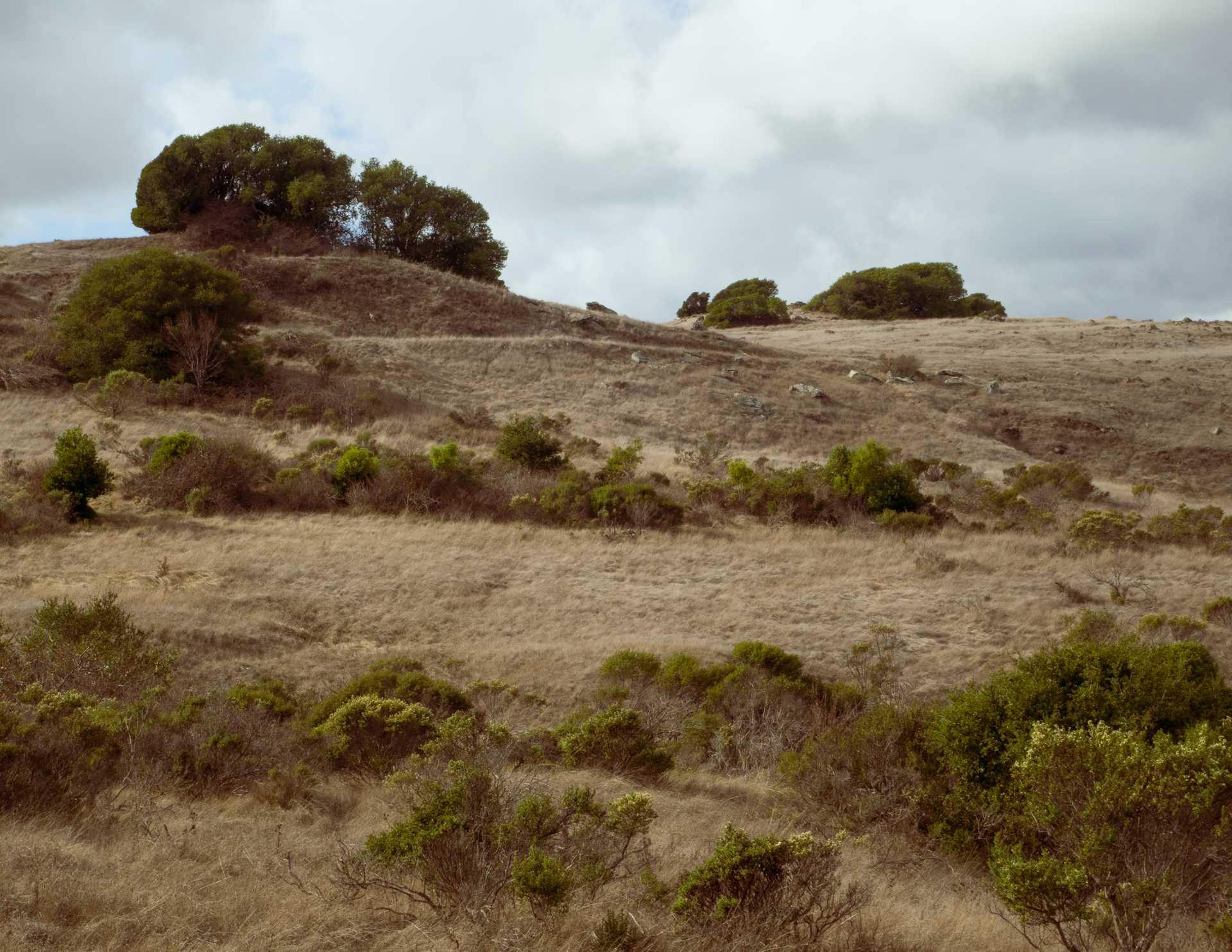 California_Hills.jpg
