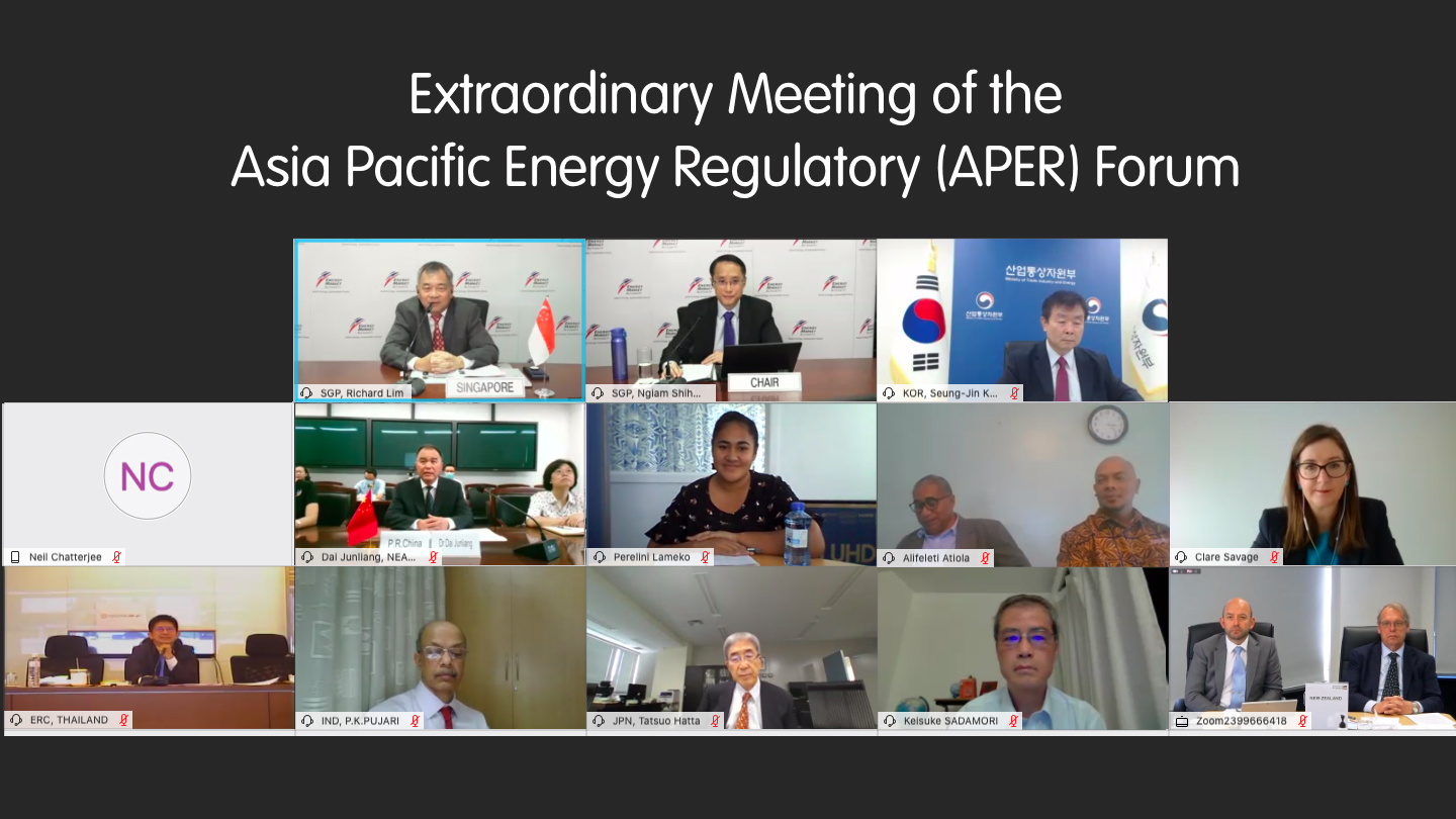 APER Forum Members participating in the Extraordinary Meeting on 14 August 2020