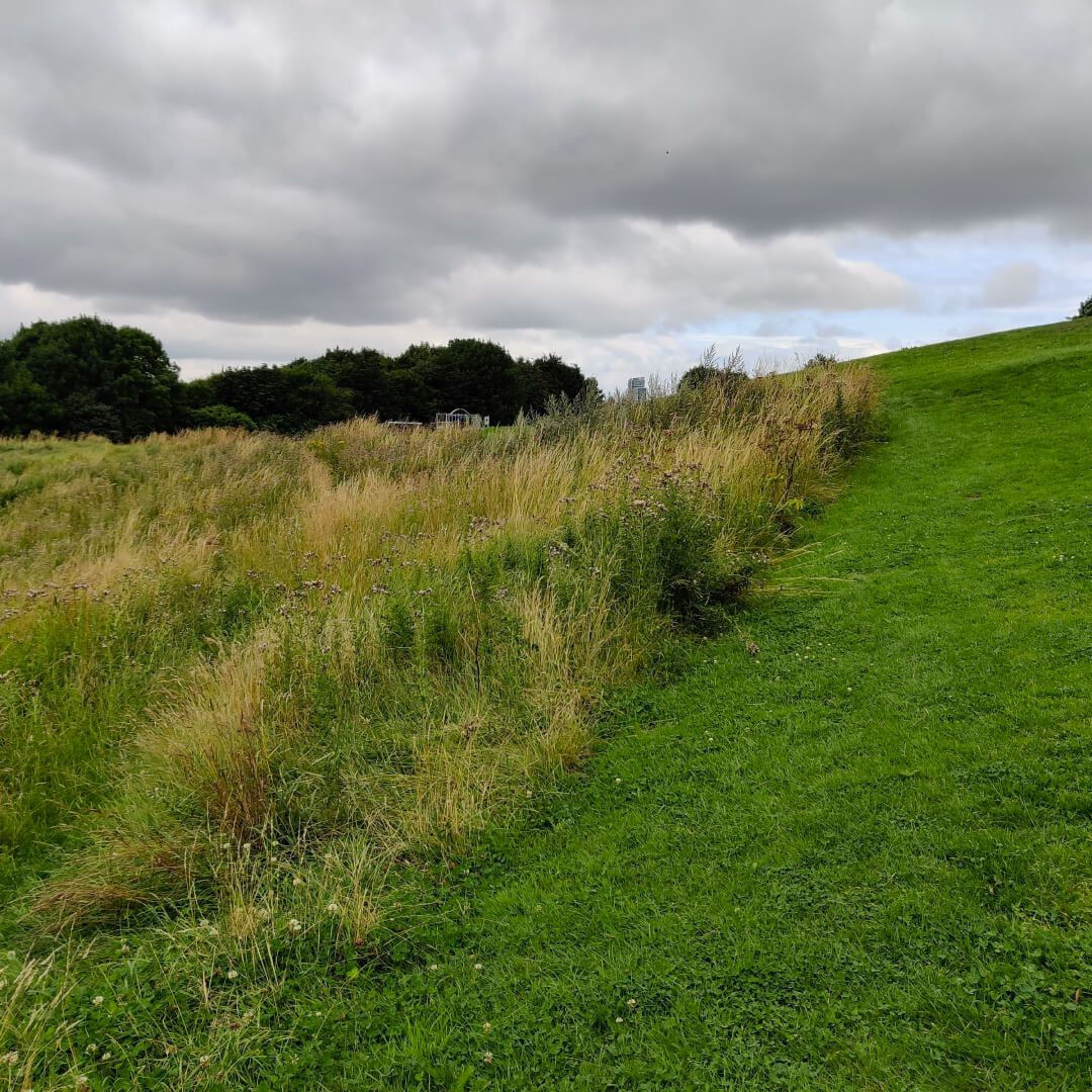 Holbeck Park Hill