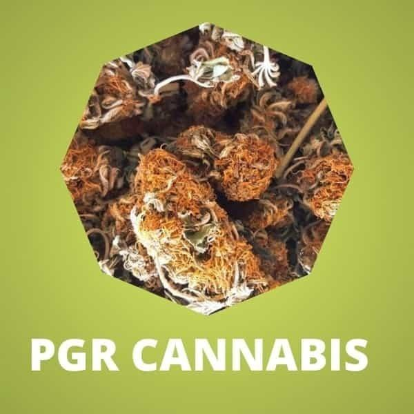 What is PGR? A Report On PGRs In Cannabis