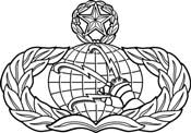 Communications and Information Badge 3C291
