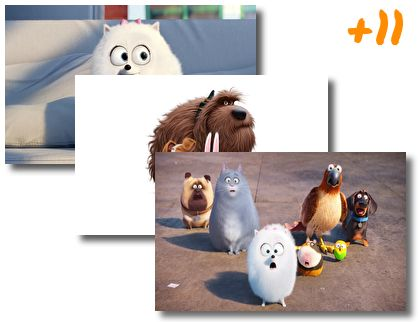 The Secret Life of Pets theme pack
