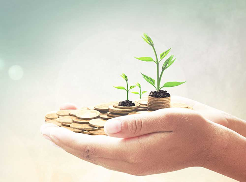 Accruent - Resources - Blog Entries - Optimizing the Investment: Supporting Sustainable Facilities - Hero