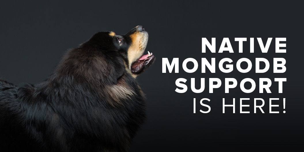 Native MongoDB Support is Here!