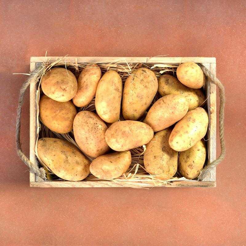 Veg box 5kg of fresh Greek potatoes from Naxos