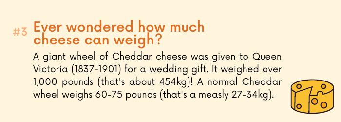 Mac & cheese fact 3