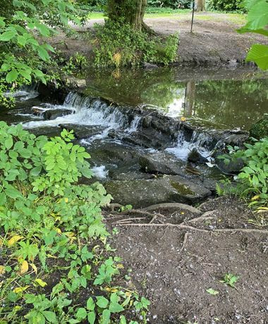 Meanwood beck with small waterfall in Meanwood Park
