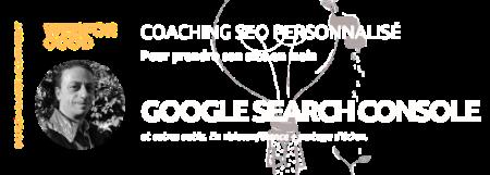 Bannière pour la Formation SEO via Google Search Console par WebForGood.fr