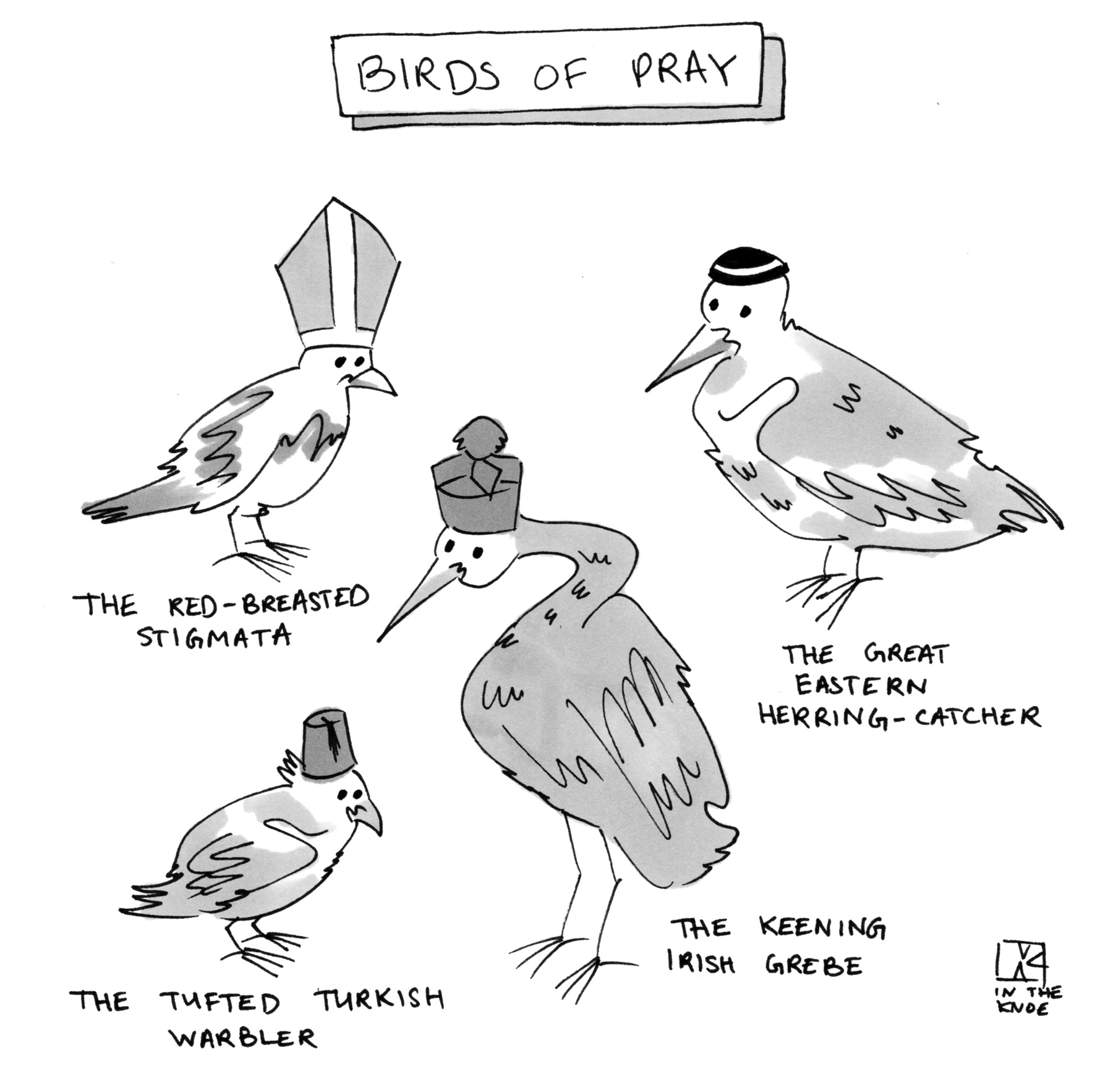 Birds of Pray: The Great Eastern Herring-Catcher, The Red-Breasted Stigmata, The Tufted Turkish Warbler, The Keening Irish Grebe