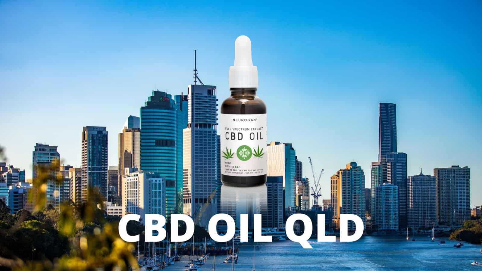 Is CBD Oil Legal in QLD?