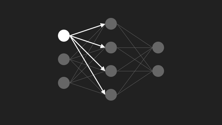 Neural network connections