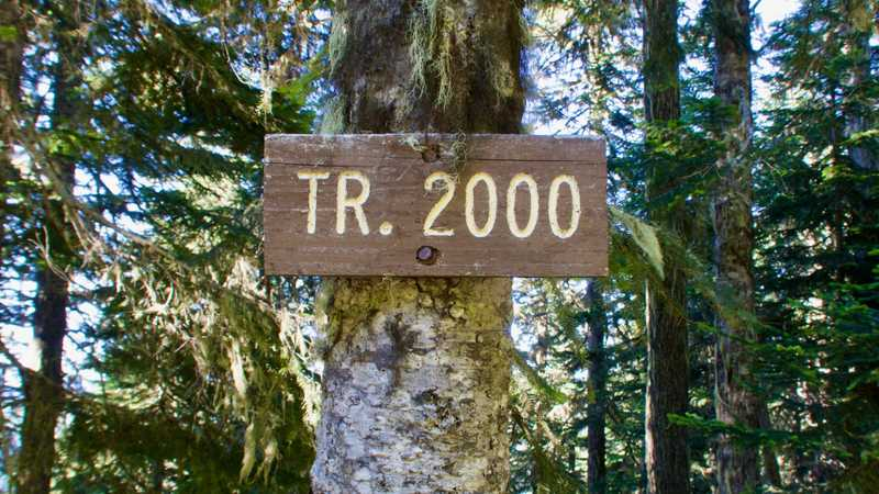 Trail 2000 sign