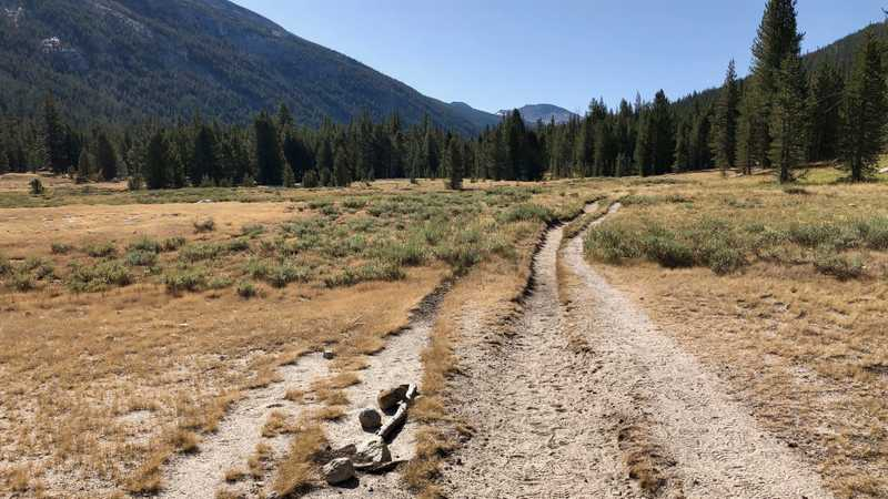 Eroded trail in Lyell Canyon