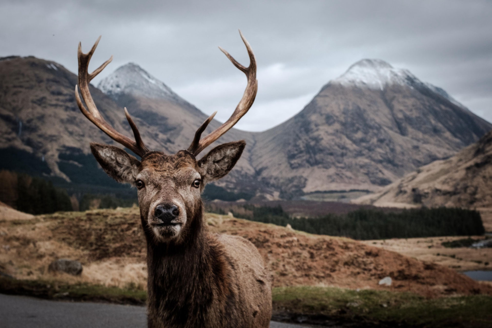 The Boss, Glen Etive