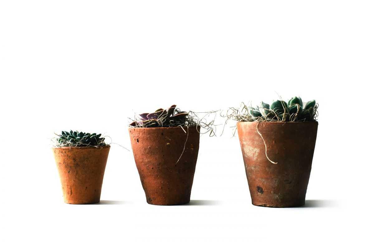 Les 3 formes de création d'entreprise expliquées