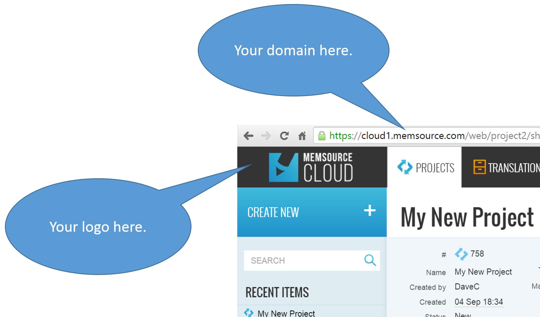 Custom Logo and Domain