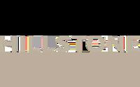 Hillstone Logo