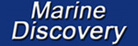 marine discovery penzance boat trips penwith