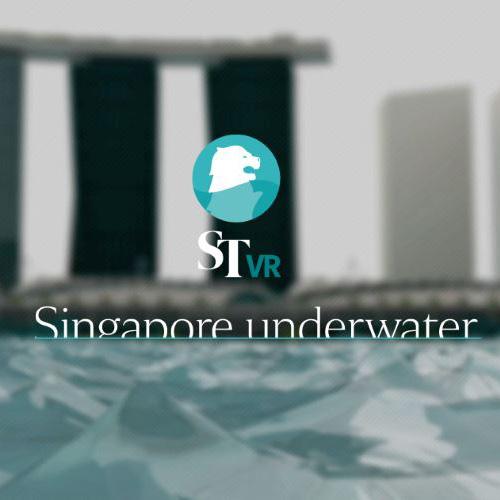 Singapore Underwater