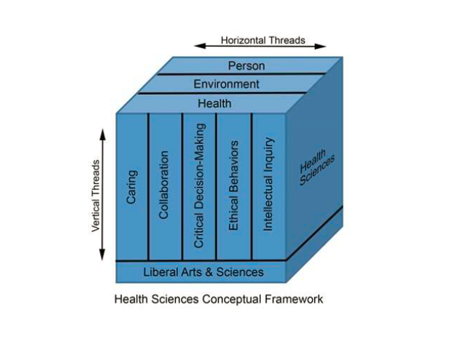 Visual Reference of Health Sciences conceptual framework