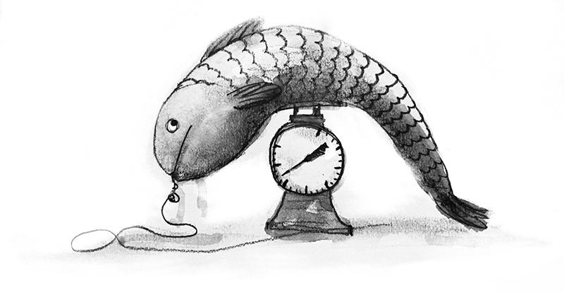 Dougal Macpherson's illustration of a fish on a scale, part of series told across this group of posts on A List Apart