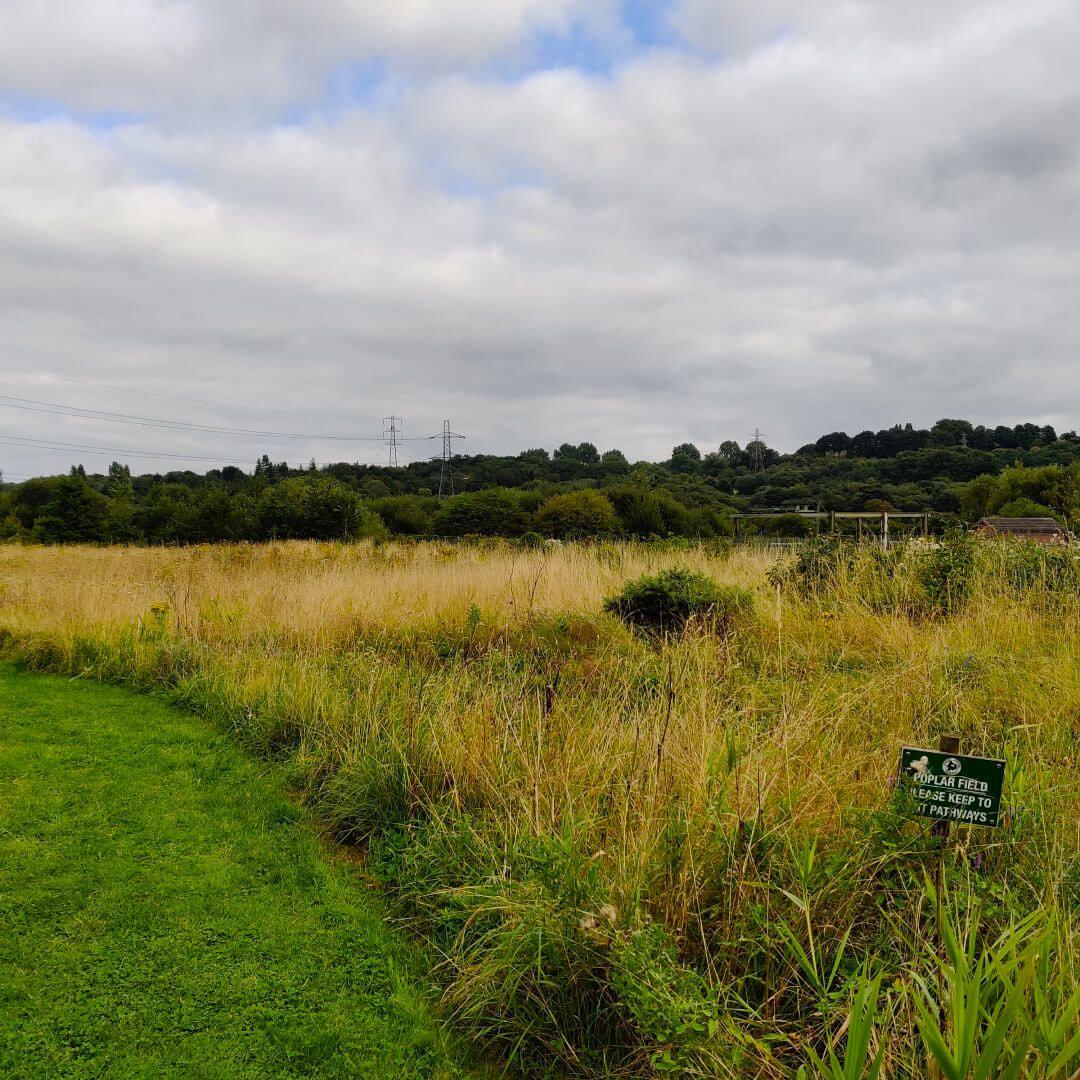 Rodley Nature Reserve