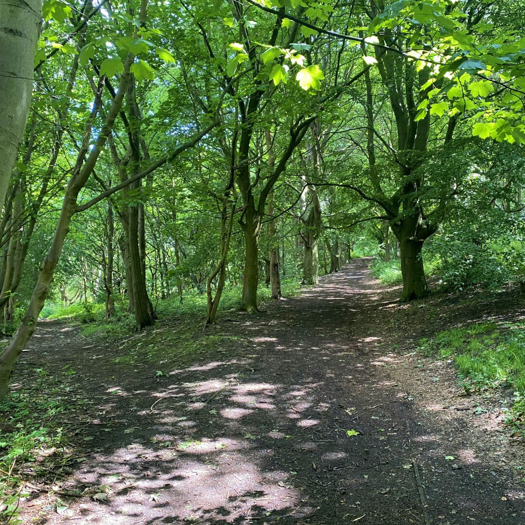 Meanwood Park path