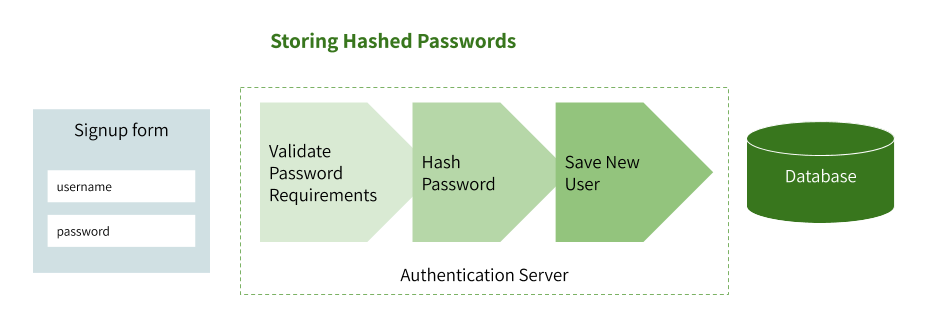 Storing hashed passwords during user signup