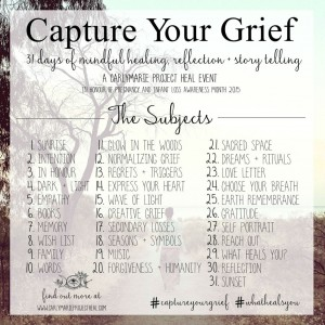 http://carlymarieprojectheal.com/capture-your-grief-2015