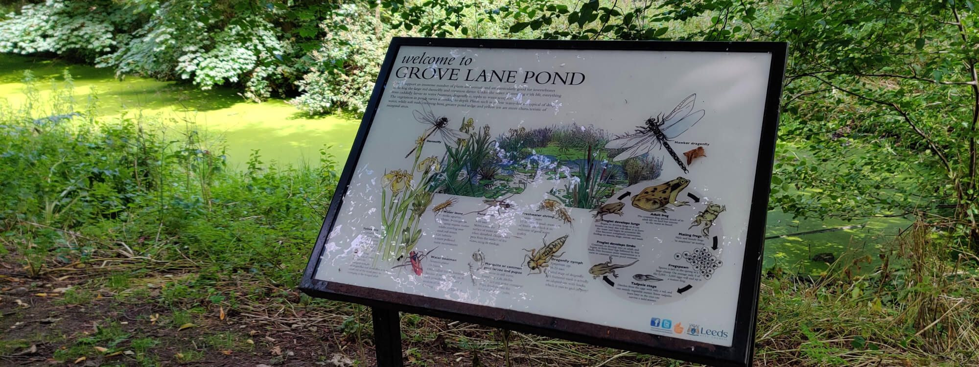 Grove Lane Pond with Sign