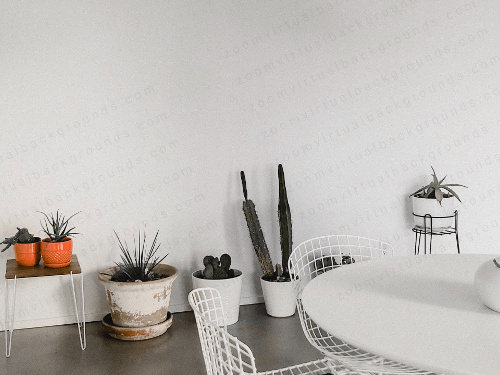 White Home Study Virtual Background for Zoom with table and wire chairs and cactus plants