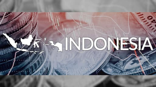 Financial services, banking and payment systems in Indonesia