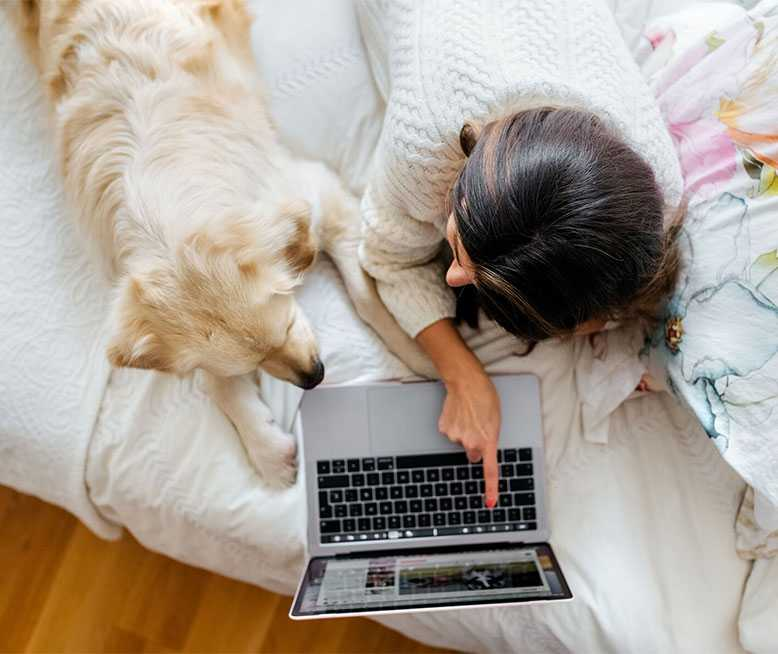 Woman Shows Therapetic Site To Her Emotional Support Dog