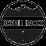 Denali Hacks logo