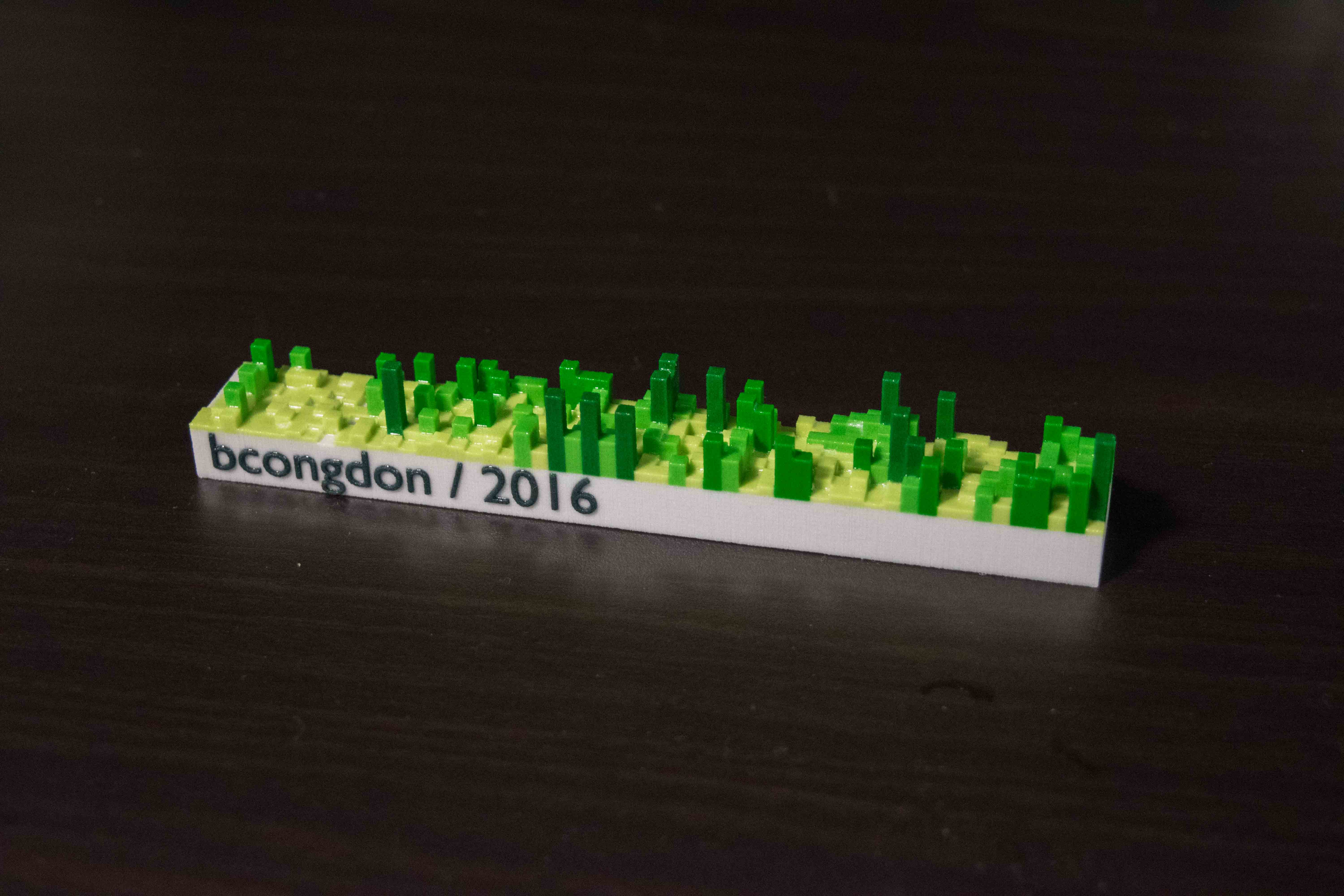 Printed 3d Model of My 2016 Github Contributions